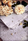 Beautiful romantic background with white roses — Stok fotoğraf