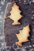 Christmas fir tree cookies — Stock Photo