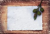 Fir branches with blank paper — Stock Photo
