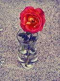 Cam vazoda kırmızı gül — Stok fotoğraf