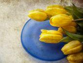 Fundo de tulipas Valentine — Fotografia Stock