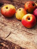 Autumn apples  on table — Stock Photo