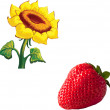 Red strawberry and Sunflower — Stock Vector #69818531