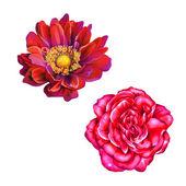 Flores rosa roja y Mona Lisa — Foto de Stock