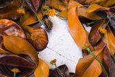 Leaves, flowers and  papers — Stock Photo