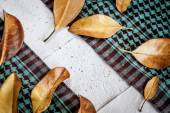 Background with leaves, scarf and papers — Stock Photo