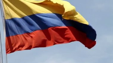 Columbian flag waving in the wind — Stock Video