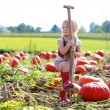 Toddler girl playing at pumpkin patch — Stock Photo #54522405