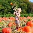 Toddler girl playing at pumpkin patch — Stock Photo #54522461