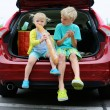 Brother and sister sitting in trunk after shopping — Stock Photo #55742979