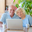Modern senior couple relaxing at home — Stock Photo #62561461