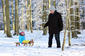 Happy grandfather playing with grandkids in winter — Stock fotografie