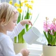 Little girl watering spring flowers — Stock Photo #63252969