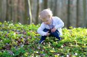 Little girl hunting for Easter eggs in spring forest — Stock Photo