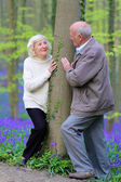 Loving senior couple walking in beautiful forest — Stock Photo