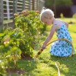 Cute little girl watering flowers in the garden — Stock Photo #68115249
