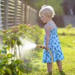 Cute little girl watering flowers in the garden — Stock Photo #68115253