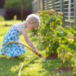 Cute little girl watering flowers in the garden — Stock Photo #68115275