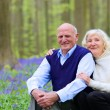 Happy seniors hiking in the forest — Stock Photo #68115743