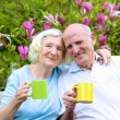 Senior couple drinking tea in the garden — Stock Photo #68115759