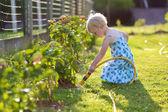 Cute little girl watering flowers in the garden — Stock Photo
