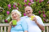 Senior couple drinking tea in the garden — ストック写真