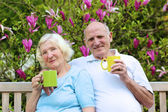 Senior couple drinking tea in the garden — Stock Photo