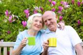 Senior couple drinking tea in the garden — Fotografia Stock