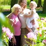 Daughter, mother and grandmother enjoying beautiful park — Stock Photo #70842647