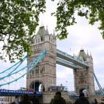Tourists enjoying view of Tower Bridge, London — Stock Photo #73982027