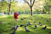 Little girl feeding birds in the park — Foto de Stock