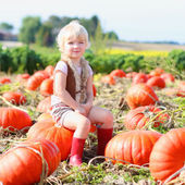 Funny little kid at the pumpkin field — Stock Photo