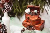 Winter wedding — Stock Photo