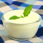 Low fat or fat-free plain yogurt. — 图库照片