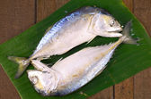 Selected Stemmed Mackerel ( Rastrelliger  brachysoma) From Thai Gulf. — Stock Photo