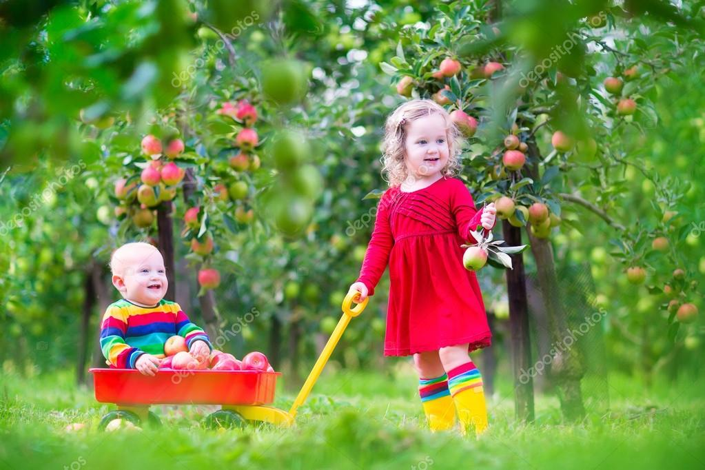 enfants qui jouent dans le jardin de la pomme photographie famveldman 52621569. Black Bedroom Furniture Sets. Home Design Ideas