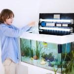 Child putting new fish in an aquarium — Stock Photo #53545325