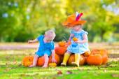 Children at pumpkin patch — Stock Photo