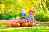 Children at pumpkin patch — Stock Photo