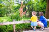 Children in the zoo — Stock Photo