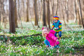 Kids playing in a spring forest — Foto de Stock