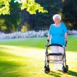 Senior handicapped lady with a walker in a park — Stock Photo #68408291