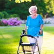 Senior lady with a walking aid in the park — Stock Photo #68408355