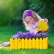 Little girl working in the garden watering flowers — Stock Photo #74647929