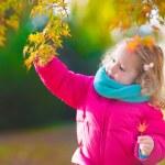 Little girl in autumn park — Stock Photo #78963610