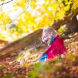 Little girl playing in autumn park — Stock Photo #78963684