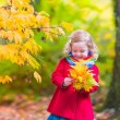 Little girl playing in beautiful autumn park — Stock Photo #78963760