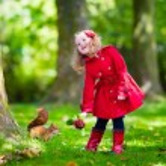 Little girl feeding a squirrel in autumn park — Stock Photo #81276468