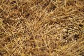 Straw on the ground — Stock Photo