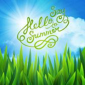 Say hello to summer — Stock Vector